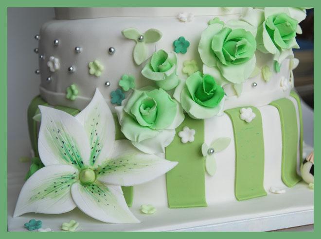 bialo-zielony2.jpg